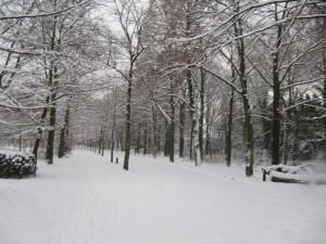 Vrijbroekpark Mechelen