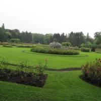 Wandelen in het Vrijbroekpark te Mechelen