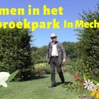 Bloemen bekijken in het Vrijbroekpark in Mechelen