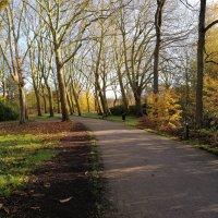 Herfst in het vrijbroekpark in Mechelen