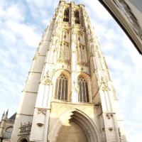 Wandelen door Mechelen en een bezoek aan de onderwaterwereld