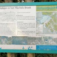 Mooie wandeling langs het wandelpad van het Mechels Broek