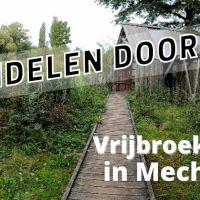 Wandelen door het Vrijbroekpark in Mechelen