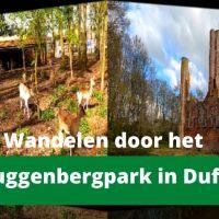 Wandelen door het Muggenbergpark in Duffel
