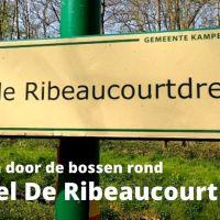 De bossen rond het Kasteel De Ribeaucourt